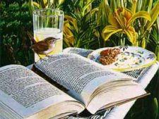 summer_reading1