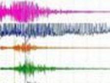 575720 0812 cutremur
