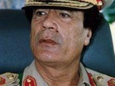 452203 0810 gaddafi