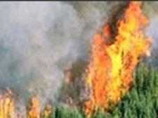 Incendiu Haldikiki
