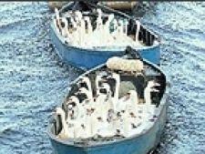 lebede in barca