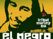 Tribute To Bob Marley
