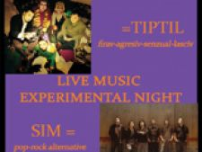 Concert Sim + Tiptil