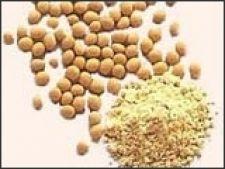 Soia, aliment - medicament