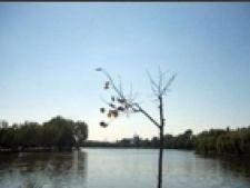 lac straulesti