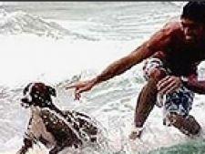 caine surfer