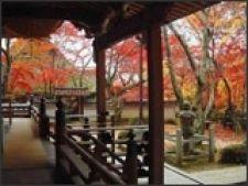 Calatorie tomnatica prin Japonia