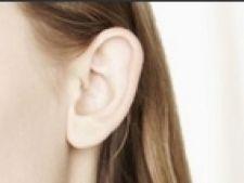 urechea stanga